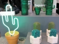 Um was für Kakteen es sich hier handelt erraten Sie nie! Zu sehen sind nämlich 4 Paar Strümpfe – verpackt als Kakteen – und in der oberen Hälfte eine Glas Karaffe mit Gläsern, die zusammen gestellt, gleich wie ein Kaktus aussehen. Fantastisch!