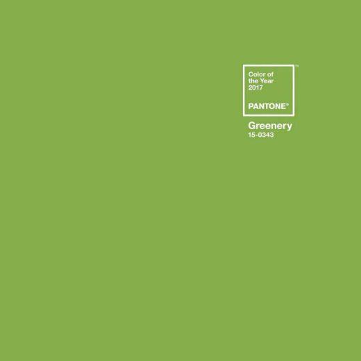 Die Pantone Farbe 2017- ein frisches, helles Grün. Grennery!