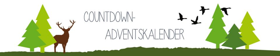 100-Tage-Countdown-Adventskalender Kopie